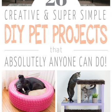 26 Simple DIY Pet Projects Anyone Can Do!