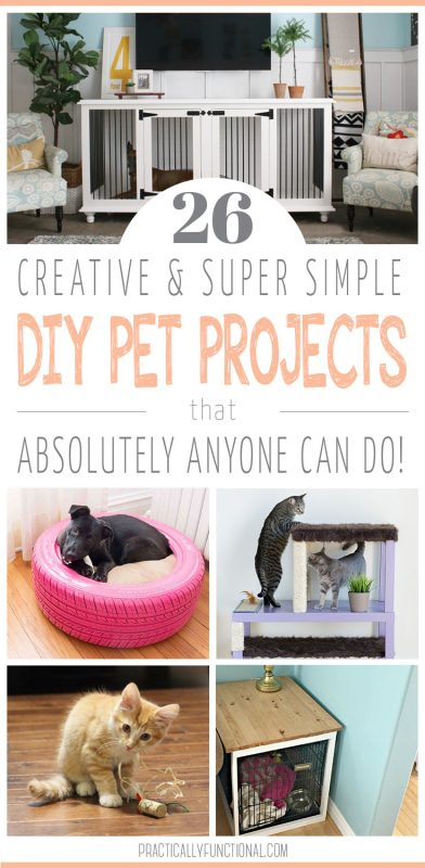 26 super simple diy pet projects anyone can do