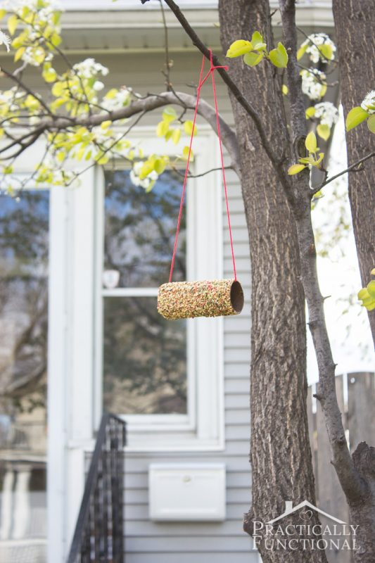 Bird feeder from a toilet paper roll and 23 other fun summer activities for toddlers