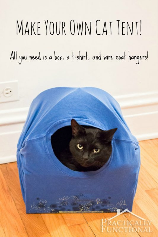 Diy cat tent bed and 25 other simple diy pet projects anyone can do