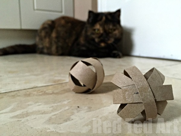 Diy cat toy make a quick toy for your pet from tp rolls and 25 other simple diy pet projects anyone can do
