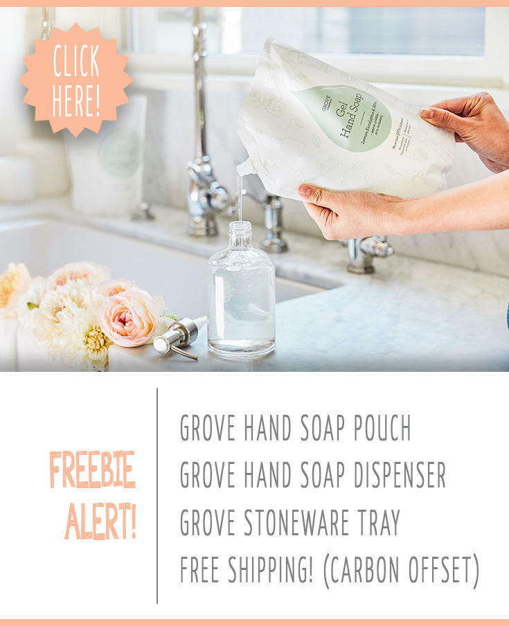Go green with free grove hand soap and glass soap dispenser image