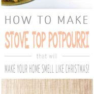 How to make christmas stove top potpourri 2 photo