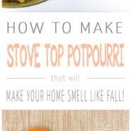 How to make fall stove top potpourri 2 photo