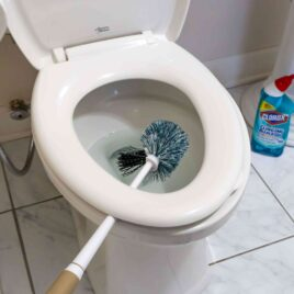 Let your toilet brush drip dry after cleaning with toilet bowl cleaner