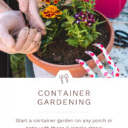 """person adding soil to a potted plant with potting supplies and text """"container gardening"""""""